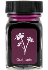 Gratitude Magenta Monteverde Bottled Ink(30ml) Fountain Pen Ink