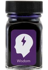 Wisdom Purple Monteverde Bottled Ink(30ml) Fountain Pen Ink